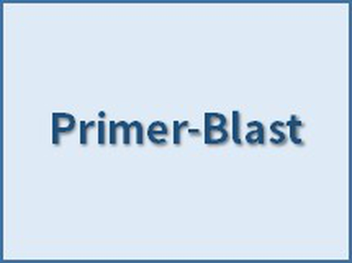 Finding primers specific to your PCR template (using Primer3 and BLAST)